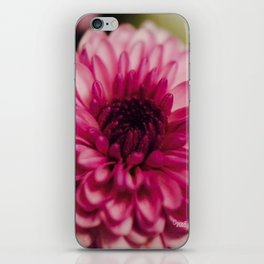 Pink Goodness iPhone Skin