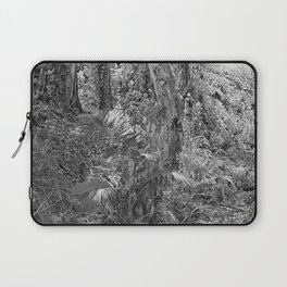 Rain forest view with creek Laptop Sleeve