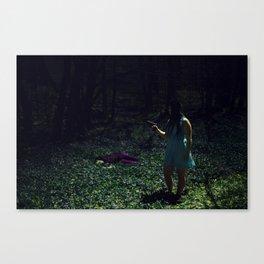 Film Couleur Canvas Print