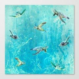 Swimming Turtles Canvas Print