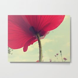 Red Poppy, Blue Sky Metal Print
