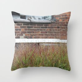 Is your grass always green? Throw Pillow