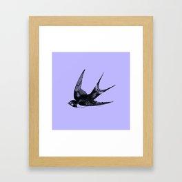 Swallow on Blue Framed Art Print