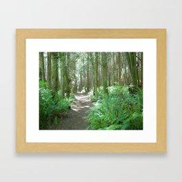 Hansville, Washington Framed Art Print
