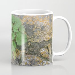 Life on a stone wall Coffee Mug
