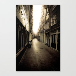 The Light Canvas Print