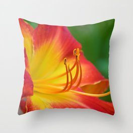 Ruby Spider Day Lily Throw Pillow