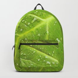 Alocasia After the Rain Backpack