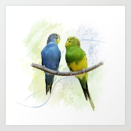 Digital Painting of Two Budgerigars Perching On A Branch Art Print