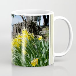DAFFODILS OF SPRING IN THE SAN JUAN ISLANDS Coffee Mug