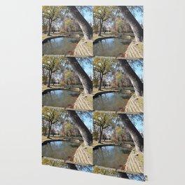 Northeastern State University - Hendricks Spring, No. 6 Wallpaper