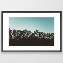 Trees Silhouette Framed Art Print