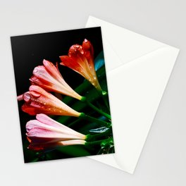 Clivia miniata Stationery Cards
