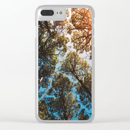 Trees and sky in sunlight- forest landscape - nature photography Clear iPhone Case