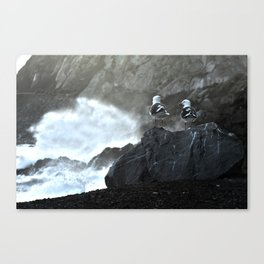 Birds and Waves Canvas Print