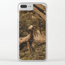 Bighorn Ram Clear iPhone Case