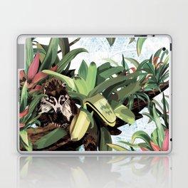 Ring tailed Coati Laptop & iPad Skin