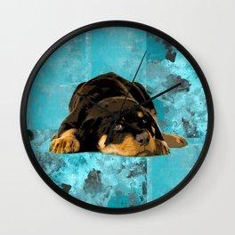 Rottweiler  - Metzgerhund Puppy Wall Clock