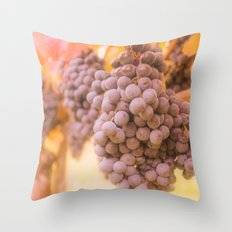 From Tuscany vineyard Throw Pillow
