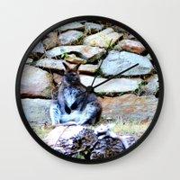 kangaroo Wall Clocks featuring Kangaroo by Raffaella315