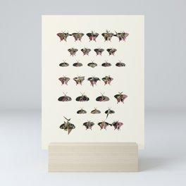 Collection of Butterflies Mini Art Print