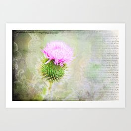 Blessed Thistle Art Print