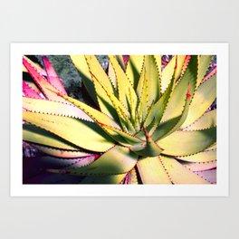 Cactus in neon colour pop photograhy no.9 Art Print
