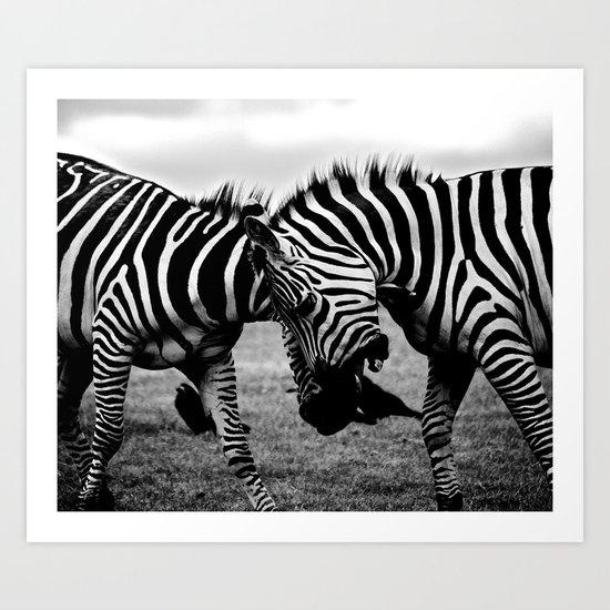 Let's Fight! // Wildlife Zebra Black Adn White Photography #society6 #art #prints Art Print