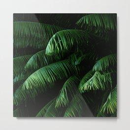 Lush green palms Metal Print