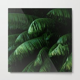 Lush green palms Metal Print