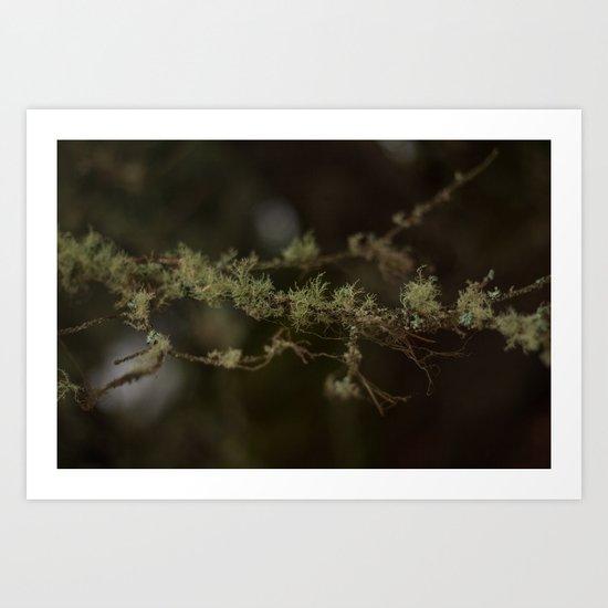 Tree Fuzz Art Print