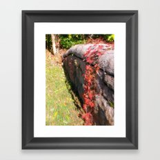 Stonewall in Color Framed Art Print