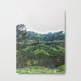 Tea fields of Ella Metal Print
