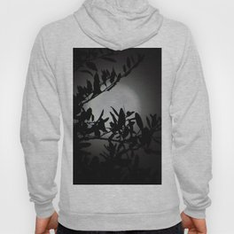 Moonlit Dreams Hoody