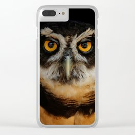 Trading Glances with a Spectacled Owl Clear iPhone Case