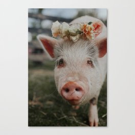Garth Canvas Print