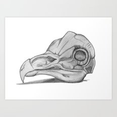 Barn Owl Skull Art Print