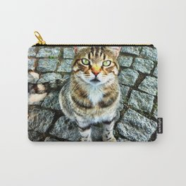 Alley Cat Carry-All Pouch