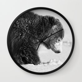 Alaskan Grizzly Bear in Snow, B & W - I Wall Clock