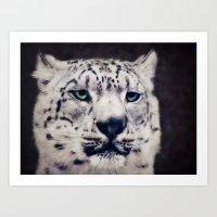 snow leopard Art Prints featuring Snow Leopard by Angela Dölling, AD DESIGN Photo + Photo