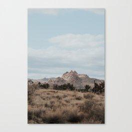 Desert Dreams in Joshua Tree Canvas Print