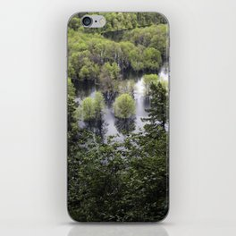 submerged trees iPhone Skin