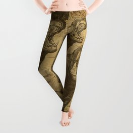 Vintage retro Hippo wildlife animal africa Leggings