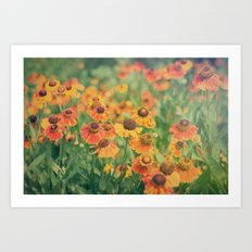 Autumn Hues Art Print