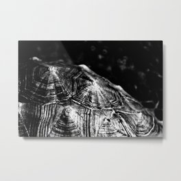 Black Shells Metal Print