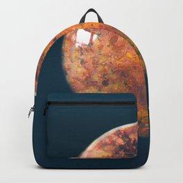 Sphere_06 Backpack