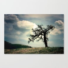 a mighty fine tree Canvas Print