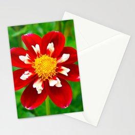 Dahlia Christmas Carol Stationery Cards