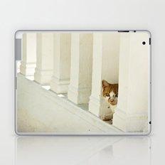 Little cat Laptop & iPad Skin