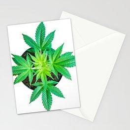 Potted Marijuana Stationery Cards